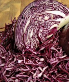 Shredded : Red Cabbage 1000 kg